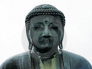 The Great Buddha Of Kamakura. Stock Photo - Image: 14118340