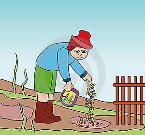 Fazendeiro Que Trabalha No Campo Fotos de Stock Royalty Free - Imagem: 14122938