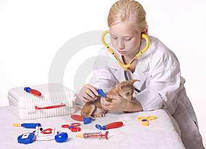 Girl Veterinarian With Puppy And Tweezers Royalty Free Stock Image - Image: 14126706