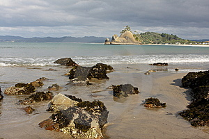 Whangapoua Shoreline New Zealand Stock Photo - Image: 14133020