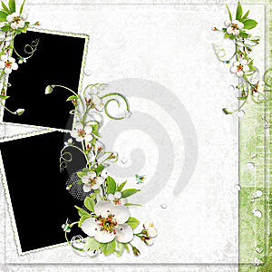 Spring Frame With Apple Tree Flowers Royalty Free Stock Photos - Image: 14134628