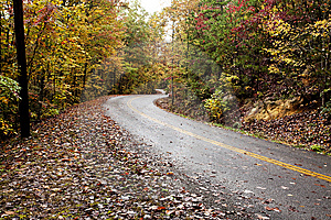 Road In Autumn Forest Stock Photography - Image: 14165072