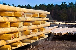 Wood Stock Image - Image: 14167381