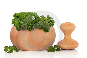 Parsley Herb Leaves Stock Photo - Image: 14169680