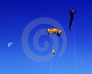 Kites Royalty Free Stock Photography - Image: 14173907