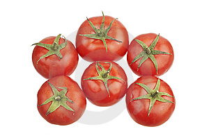 Group Of Tomatoes Stock Photo - Image: 14181670