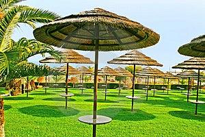 Beach Umbrellas Royalty Free Stock Photography - Image: 14195497
