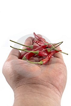 Chili Pepper Royalty Free Stock Photo - Image: 14198005