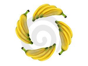 Circle Banana Stock Photography - Image: 1428962