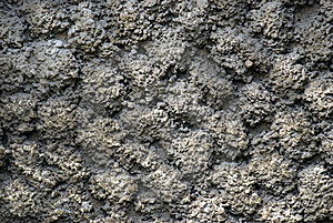 Cement Texture Royalty Free Stock Photography - Image: 14206357