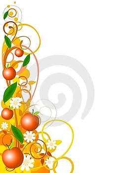 Flavor Variant_Orange Royalty Free Stock Photography - Image: 14214077