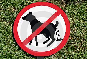 No Dog Poop Sign Royalty Free Stock Photography - Image: 14222107
