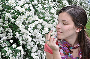 Young Girl Smells White Flowers Royalty Free Stock Images - Image: 14224779