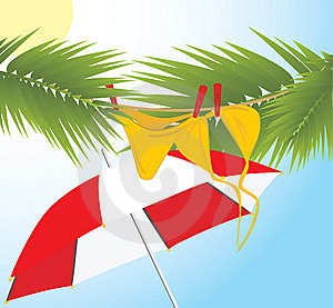 Swimming Suit Dries On The Branches Of Palms Stock Images - Image: 14225984