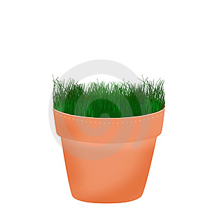 Pot With Small Plant Stock Photography - Image: 14227052