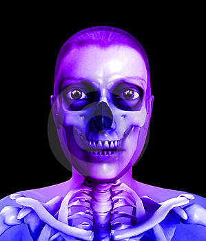 Skull And Flesh Royalty Free Stock Photo - Image: 14229005