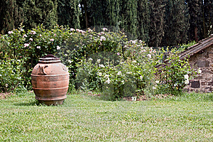 Vase In The Yard Stock Image - Image: 14233671