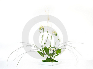 Green And White Bouquet Royalty Free Stock Photography - Image: 14234487