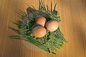 Hen's Egg Royalty Free Stock Image - Image: 14246776