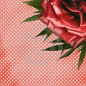 Grunge Background With Red Rose For Design Royalty Free Stock Image - Image: 14248256