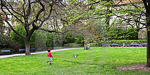 Girl Running After The Dove Royalty Free Stock Image - Image: 14252576
