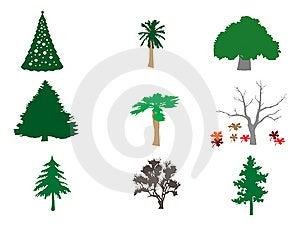 Types Of Trees Illustration Royalty Free Stock Photo - Image: 14254935