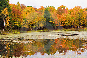Lake With Autumn Colors Stock Photography - Image: 14262522