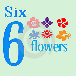 Six Flowers Stock Images - Image: 14279894