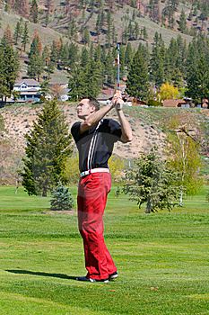Young Golfer Stock Images - Image: 14285184