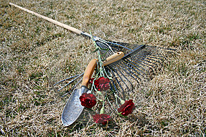 Garden Tools Over Dry Grass Background Royalty Free Stock Images - Image: 14298059