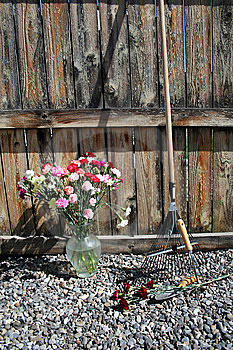 Stock Image Of Garden Tools With Carnations Stock Photography - Image: 14298072