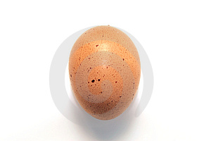 Brown egg Royalty Free Stock Image