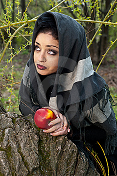Stepmother Casts A Spell Over The Apple Royalty Free Stock Image - Image: 14301956