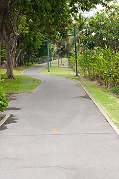 Curve Sidewalk In The Park Royalty Free Stock Photo - Image: 14313805