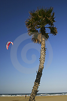 Kite Surf Royalty Free Stock Images - Image: 14319549