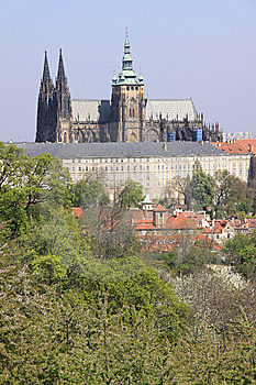 Prague's Gothic Castle With Flowering Trees Stock Photo - Image: 14319800