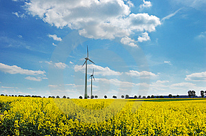 Wind Turbines Among Rapeseed Fields And Mead Royalty Free Stock Photos - Image: 14324368