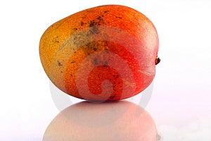 Single Mango Royalty Free Stock Photo - Image: 14324455