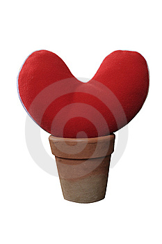 Grow Heart Love Stock Image - Image: 14329811