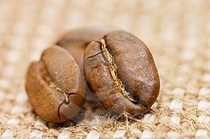 Coffee Bean On Sacking Stock Photos - Image: 14332803