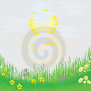 Landscape With Grass, Flowers, Sun Royalty Free Stock Photography - Image: 14353887