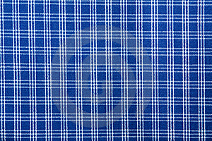 Modelo Ajustado Blanco Azul De La Materia Textil Foto de archivo - Imagen: 14358840