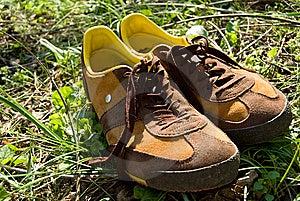 Sport Training Men's Shoes Royalty Free Stock Image - Image: 14394146