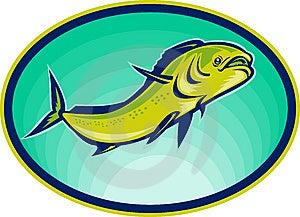 Dolphin Fish Or Mahi Mahi Royalty Free Stock Photos - Image: 14394688