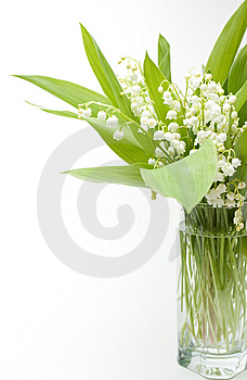 Lily-of-the-valley Bouquet Royalty Free Stock Photography - Image: 14398477