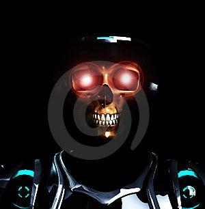 Skeleton Armour Stock Photo - Image: 14401930