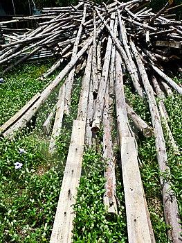Hardwood Royalty Free Stock Photo - Image: 14407765