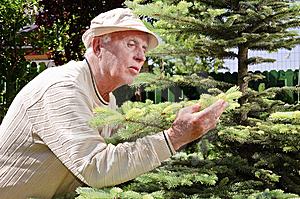 Senior Man In Garden Stock Image - Image: 14409441
