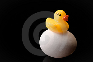 Rubber Ducky On An Egg Royalty Free Stock Images - Image: 14409549