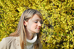 Girl And Yellow Flowers Hovering Royalty Free Stock Photography - Image: 14420917